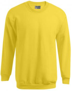 Men`s Sweater 100